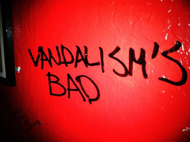 vandalism green valley tint in las vegas henderson